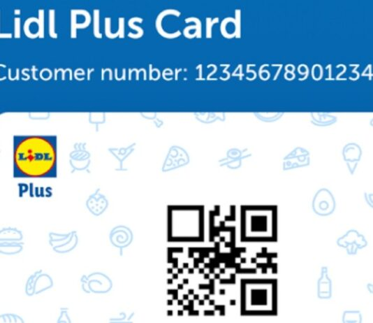 Lidl Plus app online shopping delivery