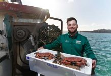 Morrisons acquires Cornish seafood supplier Falfish