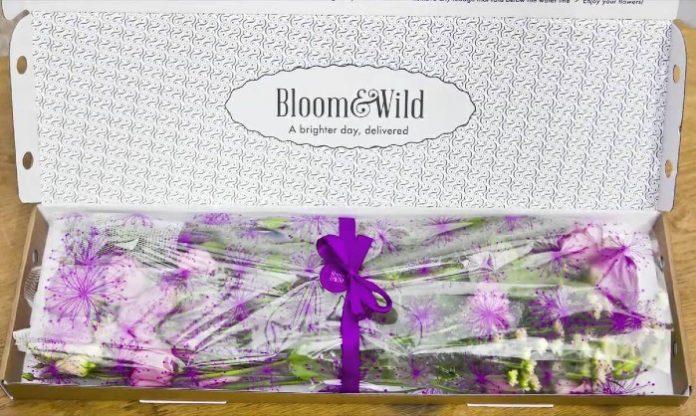 Bloom & Wild online shopping