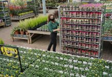 Dobbies acquires Johnsons Garden Centre