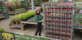 Dobbies acquires Johnsons Garden Centre