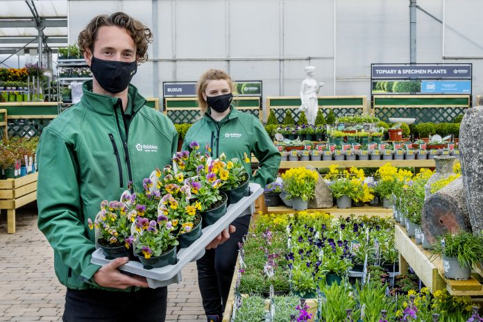 The RHS Chelsea Flower Show Dobbies trade stand has won five stars out of five as the festival officially kicks off.