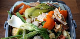 Central England Co-op cuts food waste by 40%