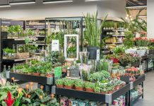 Dobbies picks London for the next 2 new Little Dobbies stores