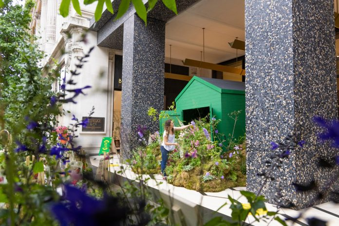 Selfridges launches in-store garden centres