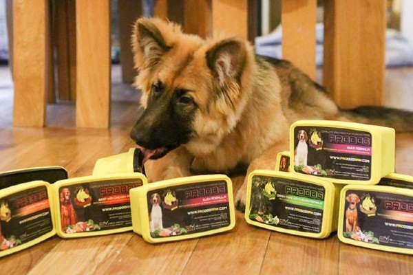 Retail Gazette speaks to ProDog founder Heidi Maskelyne on why she started her business and the importance of ingredients in pet food.
