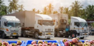 """Fresh grocery produce """"dumped due to driver shortage"""""""
