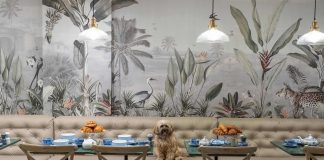 The luxury pet lifestyle brand and grooming parlour, Love My Human has launched a one of a kind townhouse concept store.