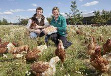 Morrisons customers raise £20m to support farmers