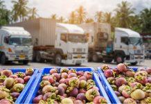 Lorry drivers plan strike as shortage crisis deepens