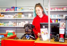 Pet retailer Jollyes has unveiled plans to accelerate growth by opening up to 20 new stores over the next 18 months