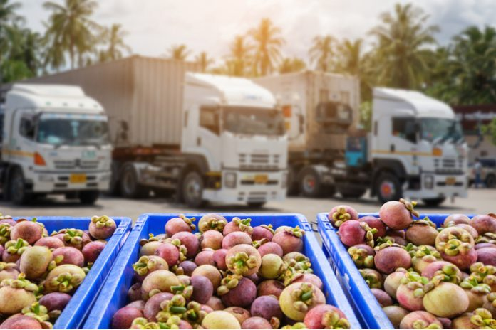 lorry driver shortage Tesco John Lewis Poundland M&S Co-op Aldi Waitrose bonus HGV crisis