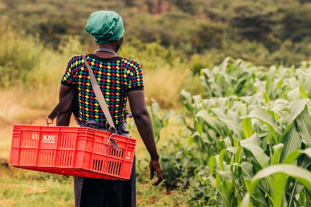 Waitrose Foundation marks anniversary by expanding to three new countries