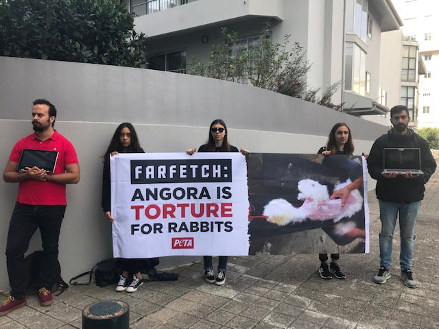 PETA has placed pressure on Farfetch to ban angora items on its site at its AGM earlier this week.The animal rights organisation became a Farfetch shareholder in September 2018 following its IPO on the New York stock market.