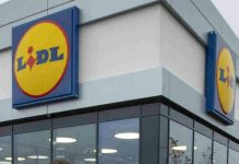 Lidl investment supply chain Ryan McDonnell