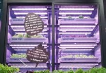 M&S partners with Infarm to bring urban farming to its London stores