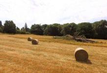 farmers heatwave